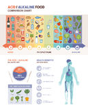 The acidic alkaline diet. Food chart infographics with food icons on a ph scale and body with health benefits icons Stock Images
