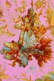 Acido ascorbico cristallizzato fotografie stock libere da diritti