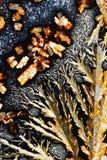 Acido ascorbico ed allume di potassio Fotografia Stock Libera da Diritti