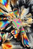 Acido citrico all'indicatore luminoso polarizzato Fotografia Stock Libera da Diritti