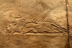 Acient Assyrian art. This ancient Assyrian art shows a lion hunt stock images