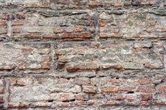 Acient-Backsteinmauerbeschaffenheit in Siena Lizenzfreies Stockfoto