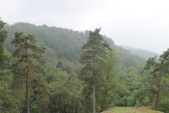 Acima da elevação no Ardennes fotos de stock