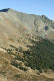Acima da linha de árvore - Colorado imagem de stock royalty free