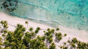 Acima da praia branca Palmeiras e água fotos de stock royalty free