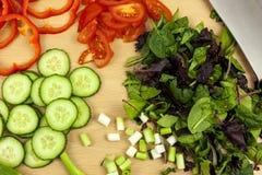 Acima do tiro de cebolas, de tomates e da salada recentemente desbastados da folha Fotos de Stock