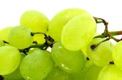 Acini d'uva bianchi Fotografia Stock