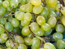 Acini d'uva verdi freschi o acini d'uva bianchi al mercato per fondo Fotografie Stock