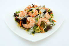 Acionador de partida saudável da salada da dieta do macarronete e do camarão Imagens de Stock