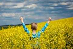 Ack view. Happy smiling  boy jumping for joy on a yellow field Royalty Free Stock Photo