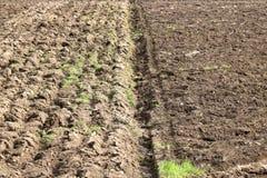 Ackerbau-und Boden-Muster Stockbilder