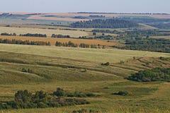 Ackerbau- und Weizenfelder Stockfotos