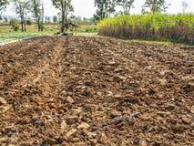 Ackerbaubearbeitung Lizenzfreies Stockbild