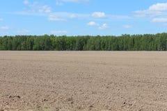 Ackerbaufeld und blauer Himmel Stockfotos