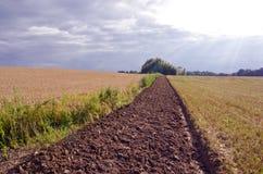 Ackerbaugraben auf dem Getreidegebiet Lizenzfreies Stockbild