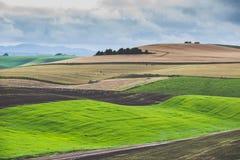 Ackerland über dem hügeligen Berg Lizenzfreie Stockfotografie