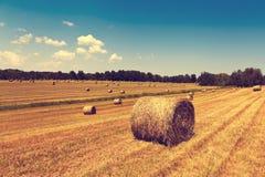 Ackerland Stockfoto