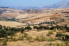 Ackerland, Andalusien Stockbilder