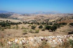 Ackerland, Andalusien, Spanien. Stockbild