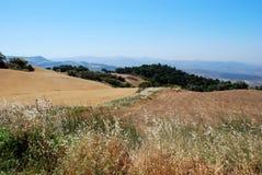 Ackerland, Andalusien, Spanien. Lizenzfreies Stockfoto