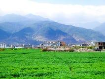 Ackerland auf dem Fuß eines Berges Lizenzfreie Stockfotografie