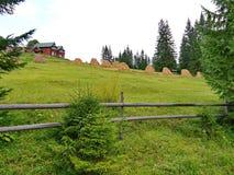 Ackerland auf der grünen Steigung und Häuser für die Unterkunft im Abstand Lizenzfreies Stockfoto