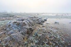 Ackerland auf einem kalten nebelhaften Wintermorgen Lizenzfreie Stockbilder