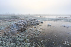 Ackerland auf einem kalten nebelhaften Wintermorgen Stockbild