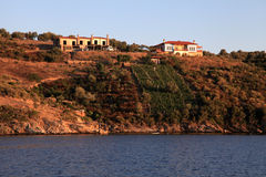 Ackerland auf griechischer Insel mit Weinberg, Griechenland Lizenzfreie Stockfotos