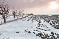 Ackerland bedeckt im Schnee Stockfotos