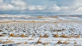 Ackerland bedeckt mit Schnee Stockfotos