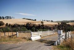 Ackerland bei Corra Lyn, Tasmanien, Australien Stockbilder