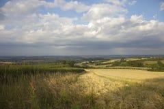 Ackerland bei Lark Stoke, Cotswolds Stockfoto