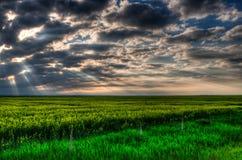 Ackerland bei Sonnenuntergang Lizenzfreie Stockfotografie