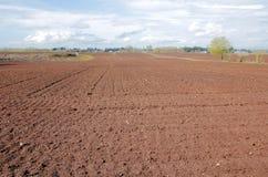 Ackerland bereit zum Pflanzen Lizenzfreies Stockfoto