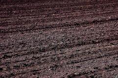 Ackerland bereit zum Pflanzen Stockbilder