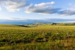 Ackerland-Berge Stockfotografie