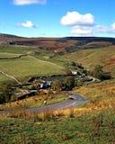Ackerland, Darnbrook, Yorkshire-Täler. Lizenzfreies Stockfoto