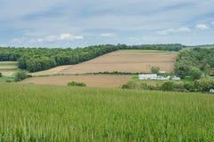 Ackerland, das William Kain Park in York County, Pennsylva umgibt Lizenzfreies Stockbild