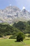 Ackerland in den Alpen in der Schweiz Lizenzfreie Stockbilder