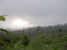 Ackerland in den Bergen in der Wolke Bali, Indonesien Stockbilder
