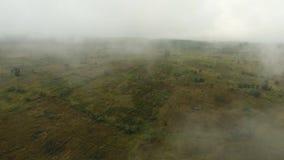 Ackerland in den Bergen im Nebel Jawa-Insel, Indonesien stock video footage