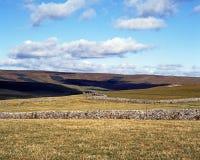 Ackerland in den Yorkshire-Tälern Lizenzfreie Stockbilder