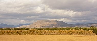 Ackerland in der andalusischen Landschaft mit Bergen von Sierra Nevada im backgroud Stockbilder