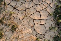 Ackerland der Dürre Stockfotografie