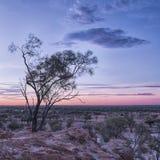 Ackerland in der Dürre bei Sonnenuntergang Stockfotos