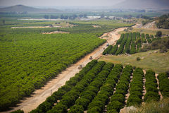 Ackerland in der Sierra Nevada-Vorberge Stockfotografie
