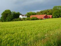 Ackerland in der weichen Leuchte. Lizenzfreie Stockfotos