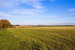 Ackerland des Herbstes Stockbild