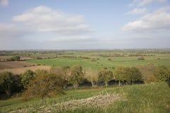 Ackerland des Somersets planiert England Stockfoto
